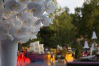 flower festival31